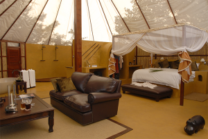 Sausagge Tree Camp-Accommodation-Honeymoon 4