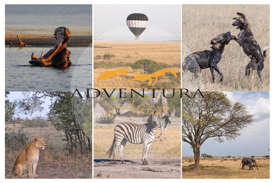 Adventura-Africa